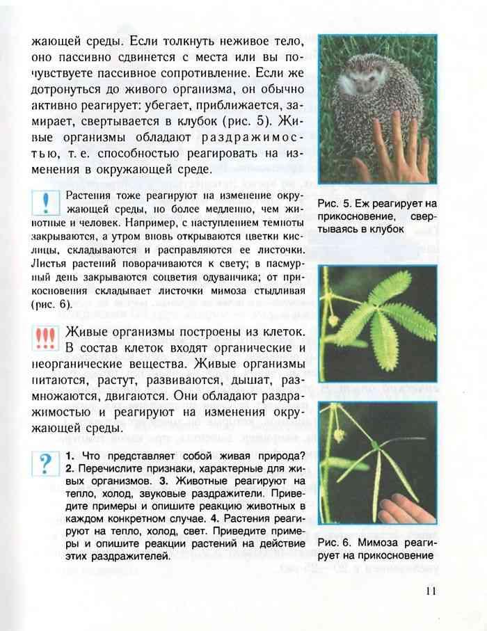 учебник по биологии 6 класс читать онлайн лисов