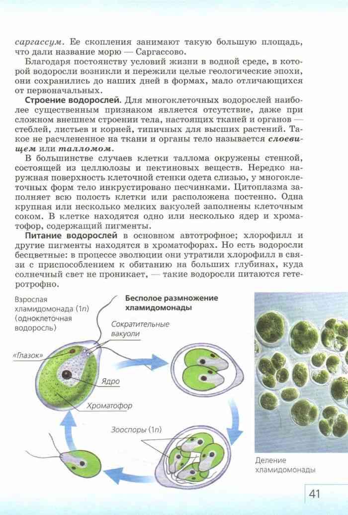 """Книга: """"биология. Многообразие живых организмов. Бактерии, грибы."""