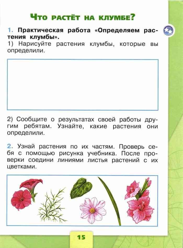 Нарисуй открытку поздравление напиши его текст 2 класс окружающий мир